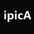 IPICA Software